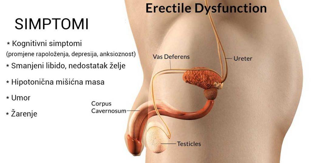 Impotencija i Erektilna-disfunkcija