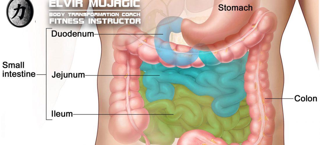 Čišćenje crijeva da ili ne?