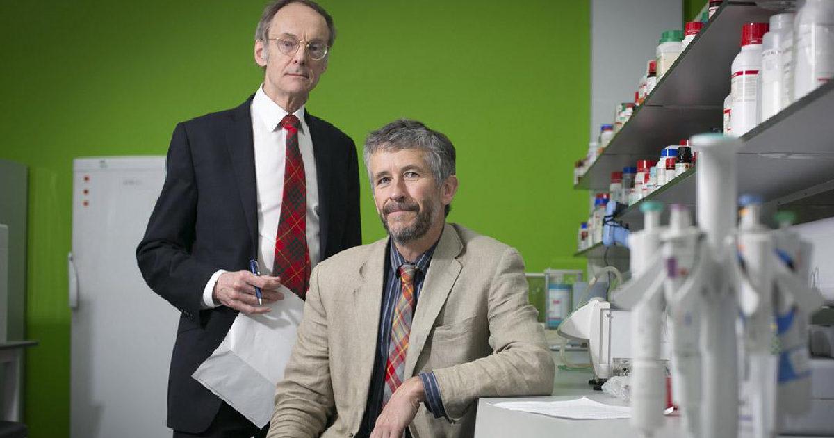 Dijabetes tip II je izlječiv u skorijoj budućnosti